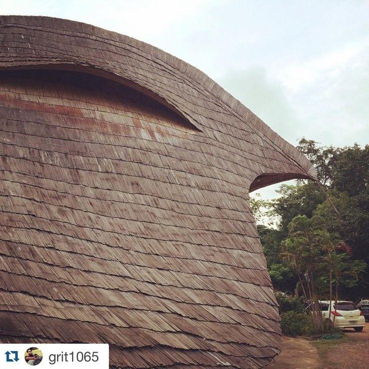 """It's a bird! Bamboo building @panyaden_school. #panyadenschool #bamboo #design #bird #architecture #vernacular #chiangmai #thailand #natural#lovenature…"""