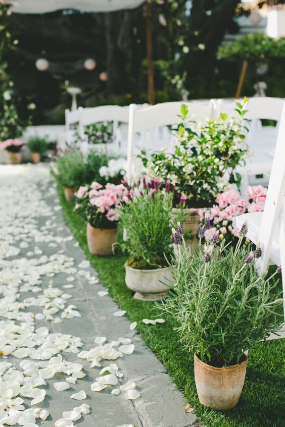 Country Potted Plants Wedding Aisle / http://www.himisspuff.com/potted-plants-wedding-decor-ideas/2/