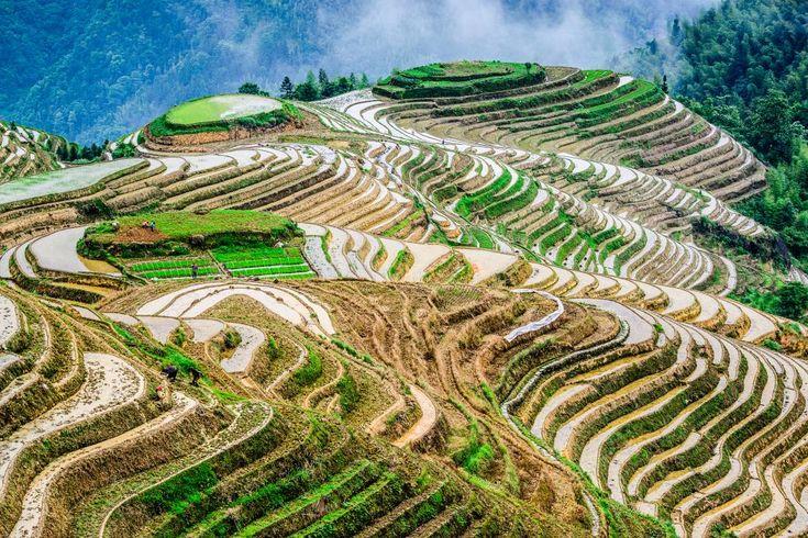 3.Dazhai, Chiny - 20 miejsc, które są zbyt piękne, by były prawdziwe (a jednak istnieją) [GALERIA]