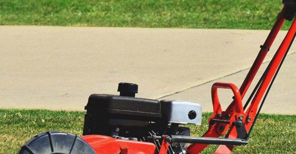 6 Best Lawn Edger (Electric and Gas) – Review & Buyer's Guide