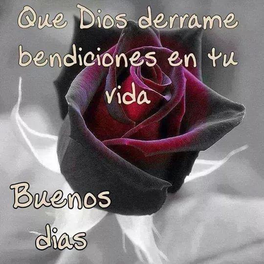 Buenos Días!  Que Dios derrame bendiciones en tu vida.