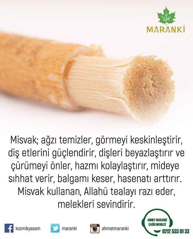 """504 Beğenme, 5 Yorum - Instagram'da Ahmet Maranki (@ahmetmaranki): """"Misvak; ağzı temizler, görmeyi keskinleştirir, diş etlerini güçlendirir, dişleri beyazlaştırır ve…"""""""