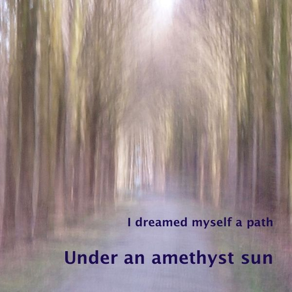 I dreamed myself a path last night…  'Under an amethyst sun' is a photo in the series 'I dreamed myself a path', part of the gallery 'Enchanted forests&#82…