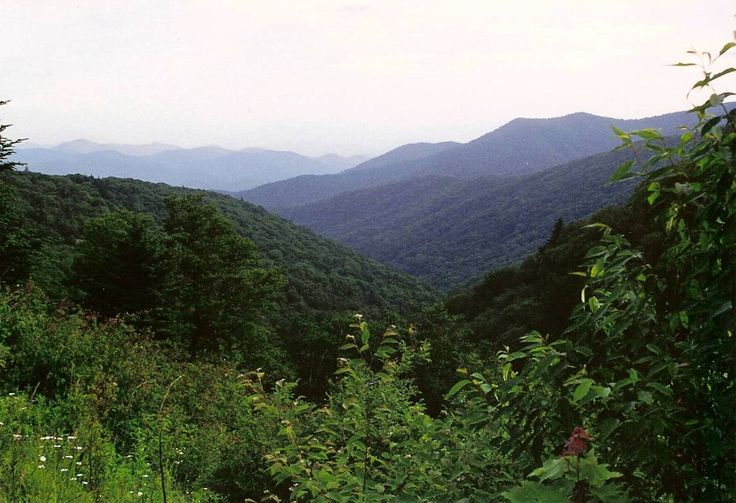 Great Smoky Mountains National Park | Great Smoky Mountains National Park, an hour west of Asheville