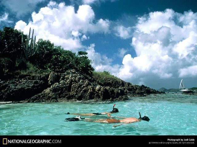 Jodi Cobb 2004, Caneel Bay Snorkel, Ilhas Virgens, EUA