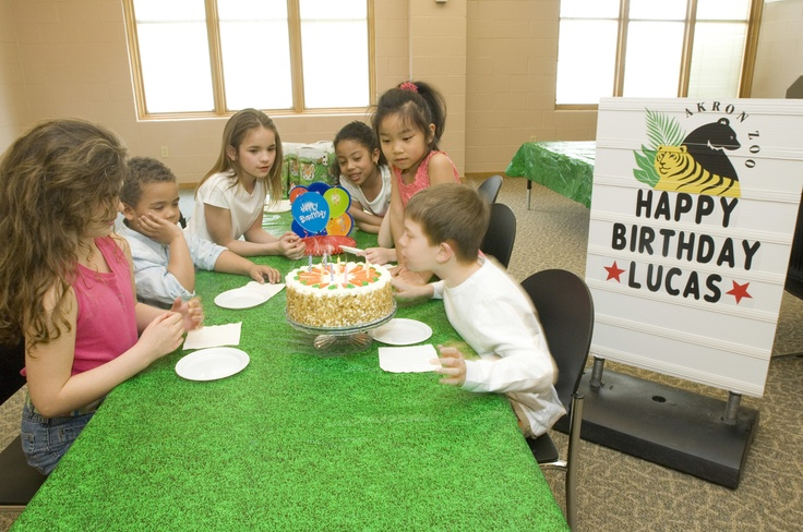 Birthday Party Detroit Zoo Image Inspiration of Cake and