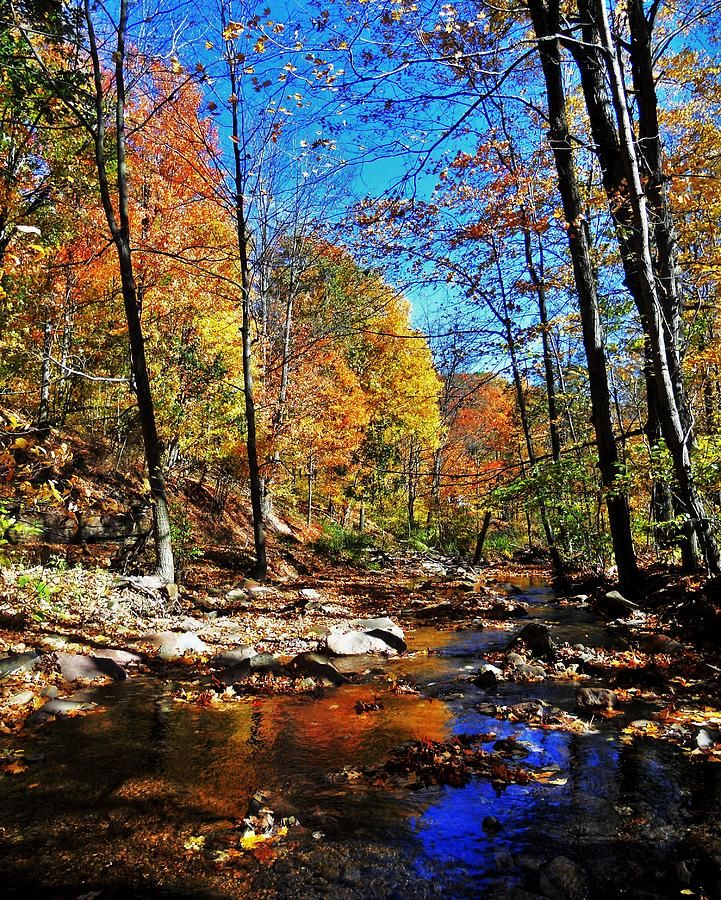 81 best images about Fall in Pennsylvania on Pinterest : Parks, Waterfalls and State parks