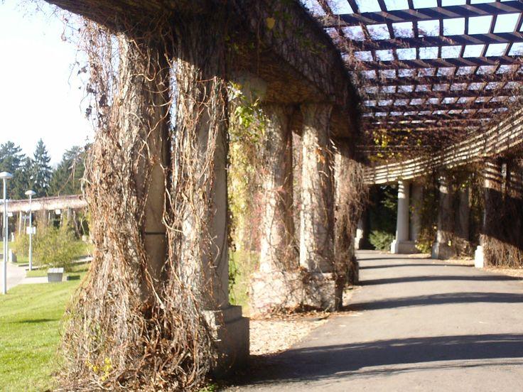 Centennial Hall + Ogrod Japonski Park The hall between the centennial haal and the ogrod japonski park  #centennial #hall #ogrod #japanese #park #wroclaw #poland #sightseeing #fun #exciting