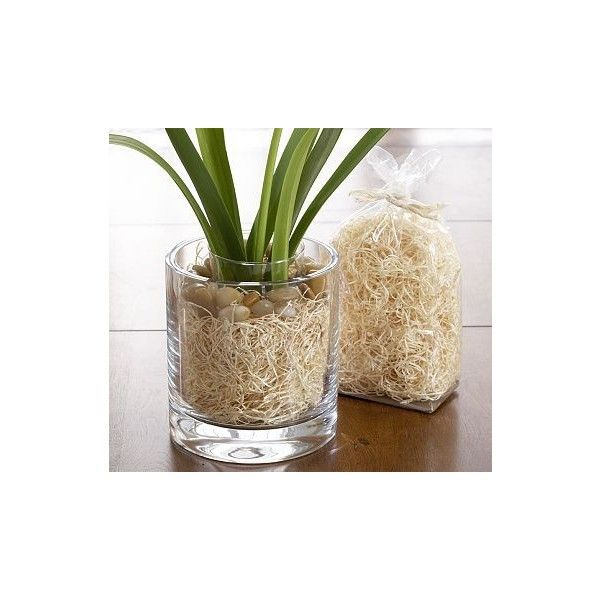shredded grass or raffia vase fillers pinterest