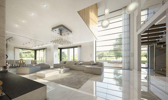 Wizualizacja wnętrz Willa Floryda - salon  #dom #wnętrze #projekt
