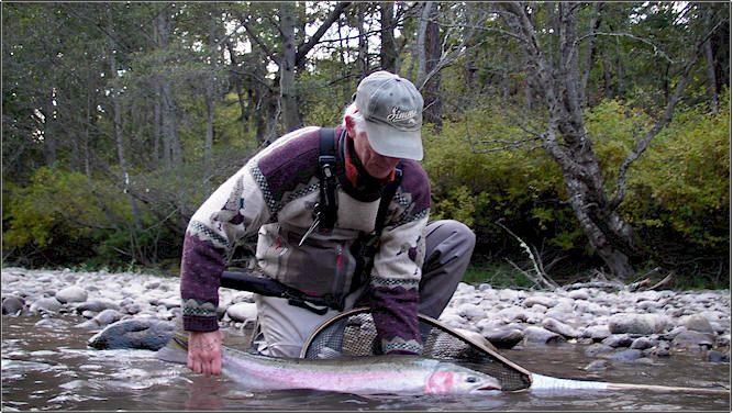 7 best silver lake wa near mt st helens images on for Silver lake washington fishing