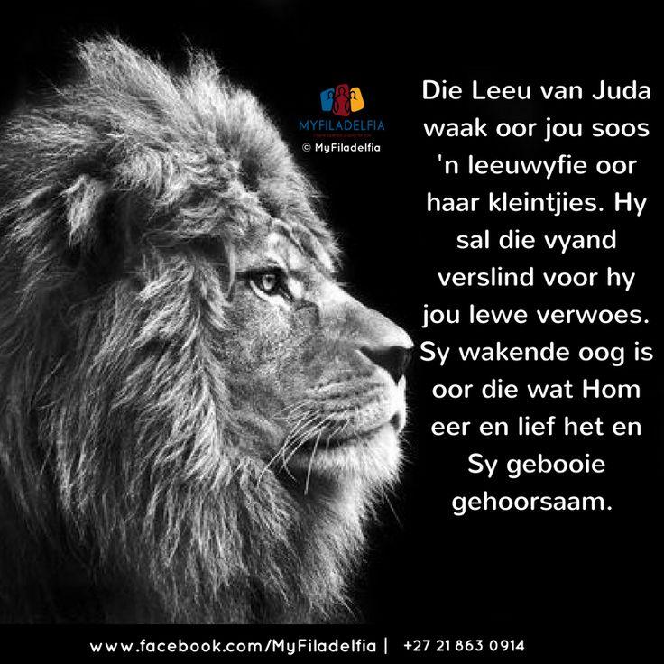 Die Leeu van Juda waak oor jou soos 'n leeuwyfie oor haar kleintjies. Hy sal die vyand verslind voor hy jou lewe verwoes. Sy wakende oog is oor die wat Hom eer en lief het en Sy gebooie gehoorsaam.