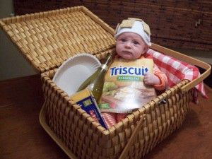 baby picnic basket costume this is what i call amazing - Funniest Kids Halloween Costumes