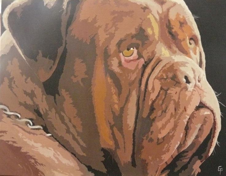 Image For Dogue De Bordeaux For Sale Uk