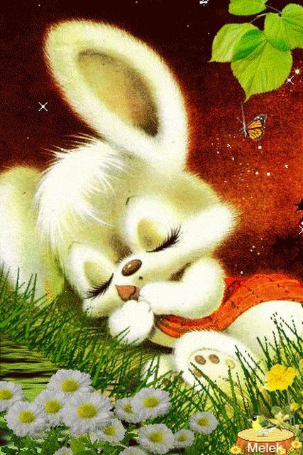 Спокойной ночи картинка зайчика