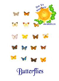 Butterflies Free Workshops (pdf)
