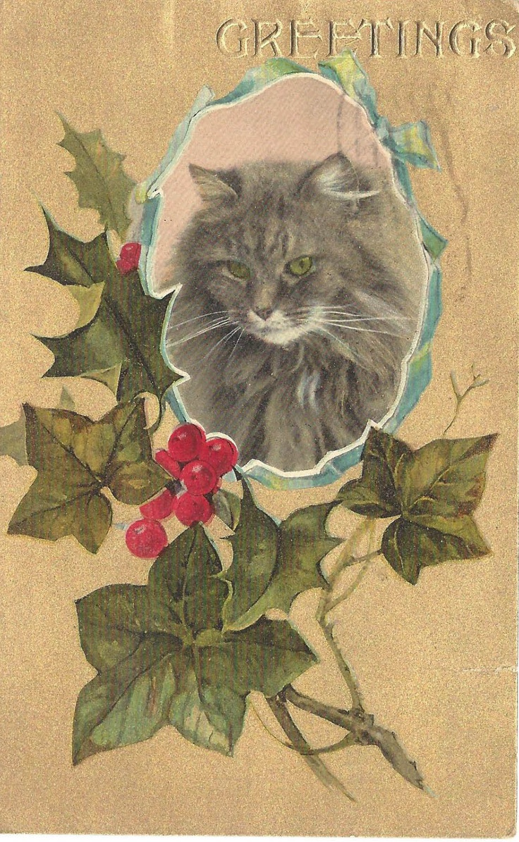 Vintage Christmas card with holly and pretty gray tabby cat----actually this cat looks a lot like Jazzy, who was a Maine Coon cat.