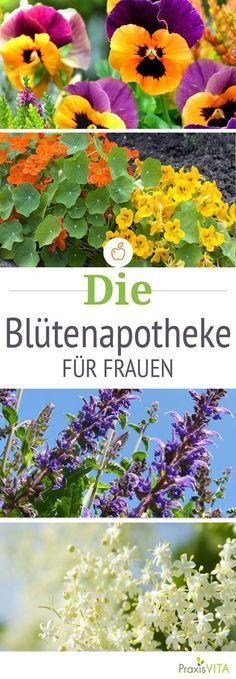 Viele Blüten lassen sich für die Gesundheit einsetzen und können Wechseljahresbeschwerden, Stress, Schlafstörungen und depressive Verstimmung mildern.