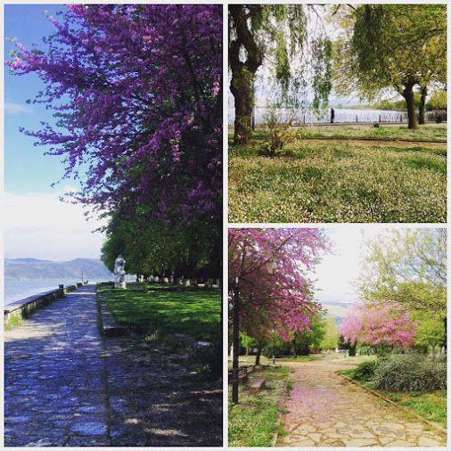 Τι κι αν σήμερα ο καιρός μας τα χάλασε, εμείς θα επιμένουμε να φέρνουμε την Άνοιξη στη ζωή μας..! Καλό απόγευμα σε όλους από την ομάδα του Aar Hotel & Spa! www.aarhotel.gr #Spring   #ThinkPositive   #Aarhotel   #Boutiquehotel   #Ioanninahotel   #Ioannina   #Epirus   #Greece   #VisitGreece