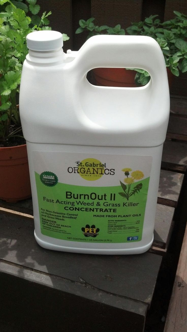 Organic weed killer that we use it is really safe for