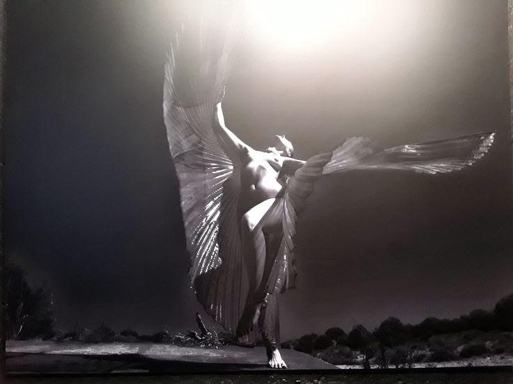 .BEAUTY. – выставка фотографии Марселя Штайнера.  В своих работах Марсель Штайнер стремился «сфотографировать» не тело женщины, а её мысли и эмоции, которые она обычно хранит внутри и редко высказывает.  Что есть красота? Можно ли между понятиями «тело» и «красота» поставить знак равенства? Должна ли красота иметь функцию?  #EstPortal #эстетическийПортал #InstitutEsthederm #Esthederm #beauty #ИнститутЭстедерм #фотовыставка #красота
