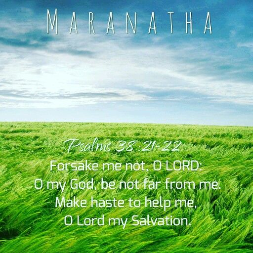 #Psalms 38:1, 15-22 (KJV) O LORD, rebuke me not in thy wrath: neither chasten me in thy hot displeasure. For in thee, O LORD, do I hope: thou wilt hear, O Lord my God. For I said, Hear me, lest otherwise they should rejoice over me: when my foot slippeth, they magnify themselves against me. For I am ready to halt, and my sorrow is continually before me. For I will declare mine iniquity; I will be sorry for my sin. But mine enemies are lively, and they are strong: and they that hate me…