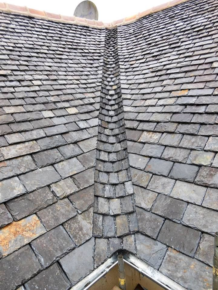 Guide On How To Repair Your Roof In 2020 Green Metal Roofing Solar Panels Solar Shingles