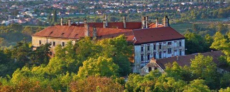 A galgóci Erdődy kastély, TájGazda