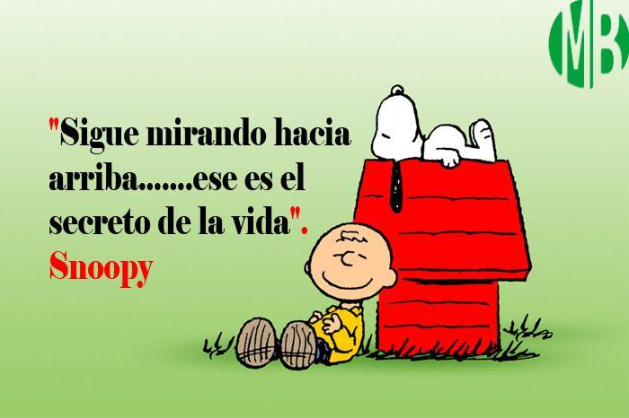 Megapost frases ilustradas de Snoopy y Charlie Brown