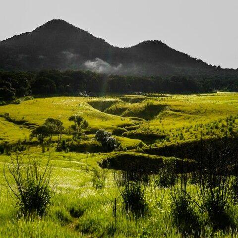 Tegal Panjang, Mount Papandayan. Garut. West Java. Indonesia.