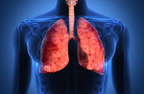 πνεύμονες αναπνευστικό