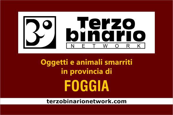 Oggetti e animali smarriti in provincia di Foggia