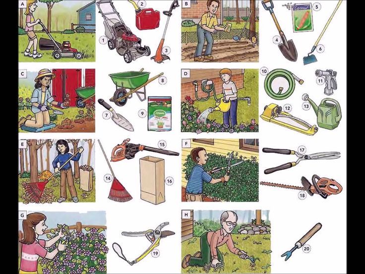 652 best images about vocabulary on pinterest english for Gardening tools vocabulary