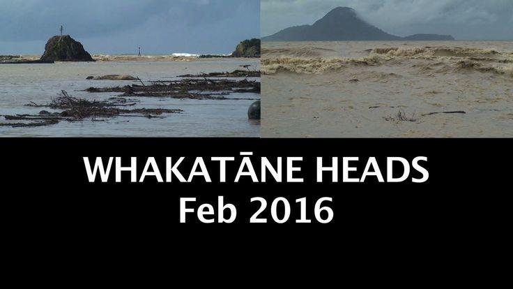 WHAKATĀNE  Heads after heavy rain 18th Feb 2016