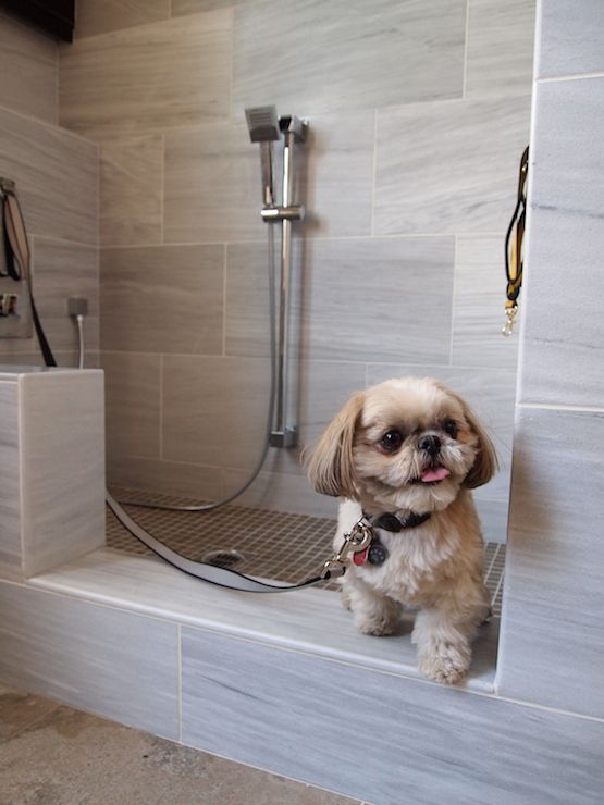 Dog friendly mudroom features dog shower fitted with gray stone surround and gray grig shower floor.