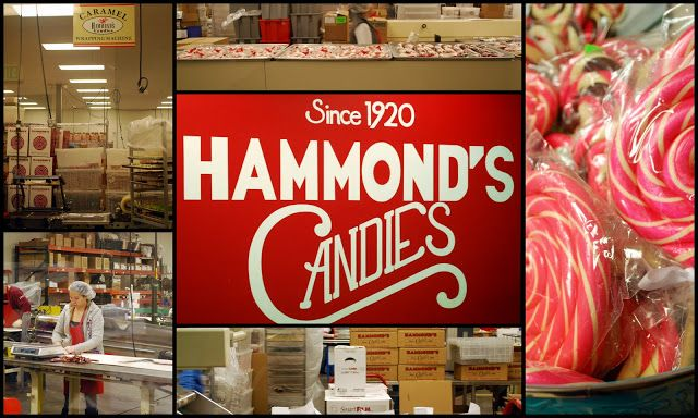 Mille Fiori Favoriti: The Hammond's Candy Factory