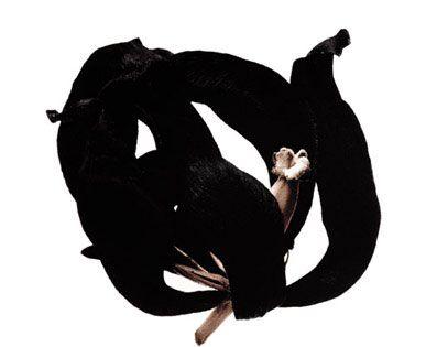 Denis Brihat: la semplicità della natura ~ Fotografia Artistica Blog G. Santagata