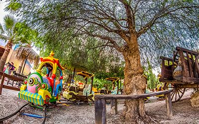 The Place To Visit in Cyprus, Camel Park in Mazotos, Cyprus