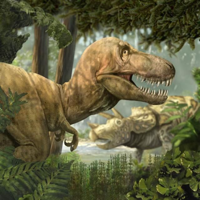 How Much Do You Really Know About T. Rex, the King of the Dinosaurs?: Fact #2 - T. Rex's Arms Weren't as Tiny as You Thought
