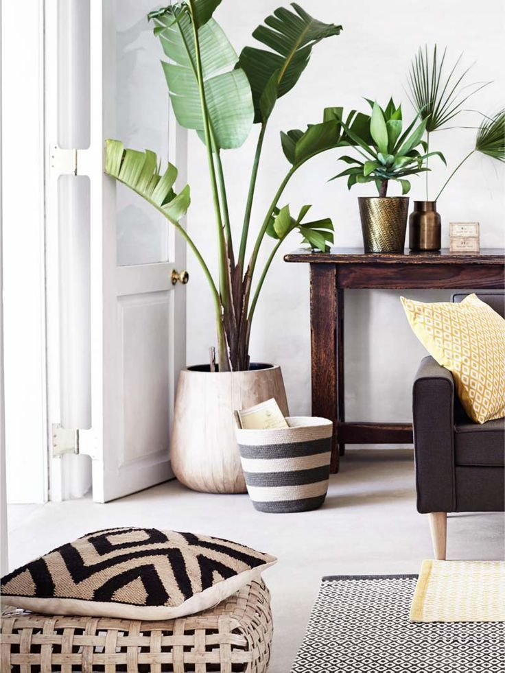 Modern living room with jute throw pillow and indoor plants