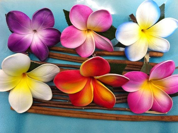 You Choose 3x Plumerias Hair Flowers For Only 15 00 Great For Any Special Occasion The Plumeria Flower I Plumeria Flowers Hawaii Flowers Pretty Flowers