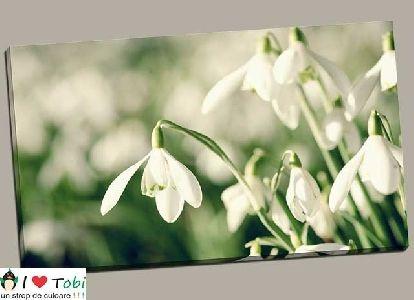 Tablou armonia florilor - cod L27
