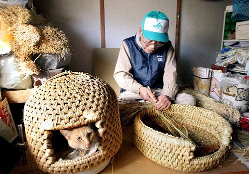 It is a neko chigura, a Japanese woven cat nest or cat bed.