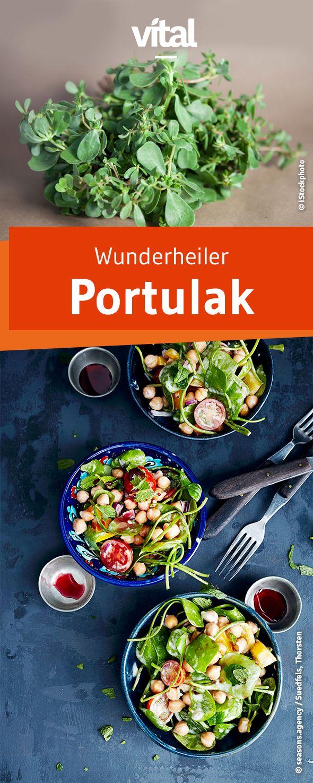 Früher galt Portulak als Heilpflanze und wurde bei den Griechen sehr geschätzt. Auch heute können wir von seinen Vitalstoffen profitieren. Wir verraten zwei tolle Rezepte.