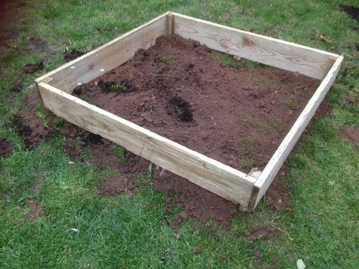 Another new raised bed! Still bit of a work in progress to get it firmly into the ground :(