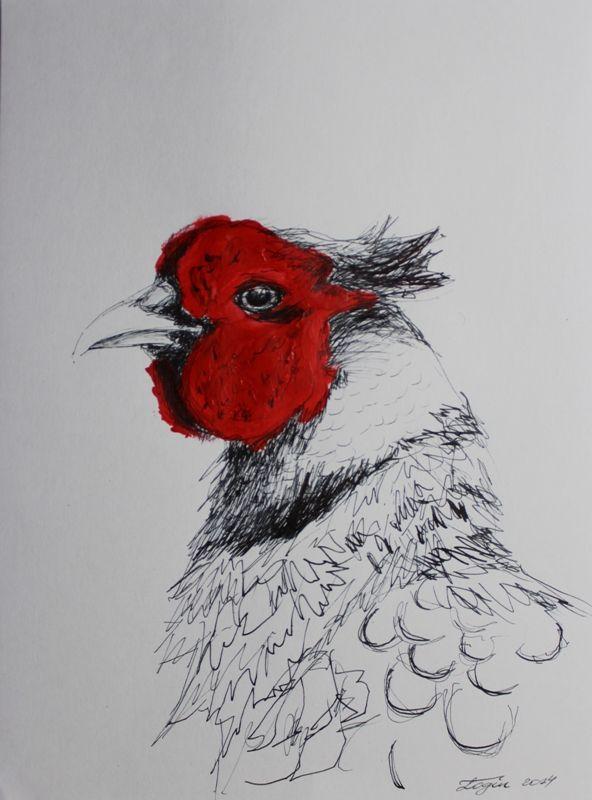 ink pheasant - Google ...