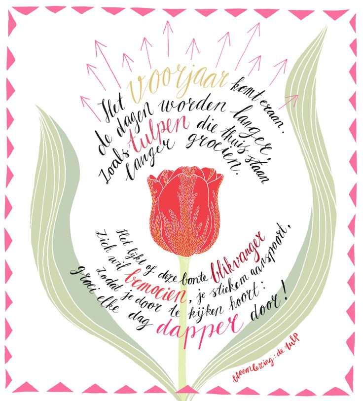 Bloemlezing de tulp. Illustratie: Het Paradijs. Dichter: Kim Triesscheijn. www.mooiwatbloemendoen.nl/bloemlezing-de-tulp #bloemlezing #bloemen #tulp #tulip #ode #flowers #poetry