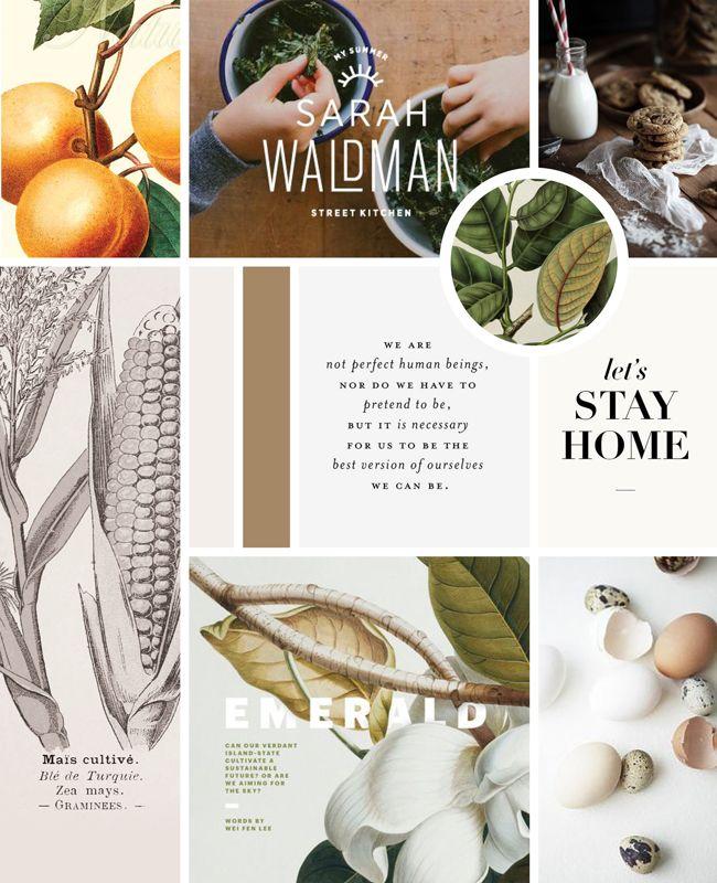 Vintage Modern Cookbook Moodboard   Spruce Rd. #design #botanical #vintage
