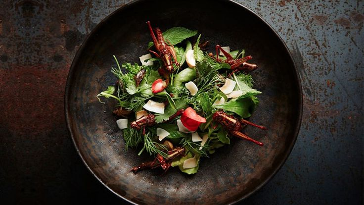 At a hip Bangkok restaurant, foodies with adventurous palates tuck into a bug-based menu.