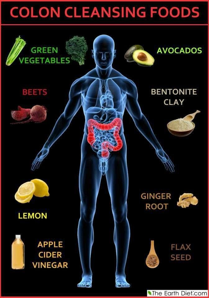 Colon Cleansing Foods..  The main function of the colon (main part of the large intestine) is to absorb the remaining water and electrolytes from the indigestible food matter, to accept and store food remains that were not digested in the small intestine, and to eliminate solid waste (feces) from the body. So protect your colon